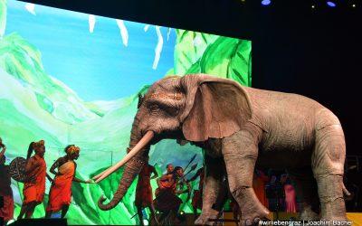 AFRIKA! AFRIKA! begeistert Graz – März 2019
